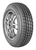 Telstar Tire Weatherizer